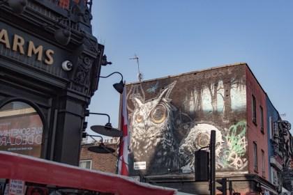 hiboux dans Camden Un week end a Londres