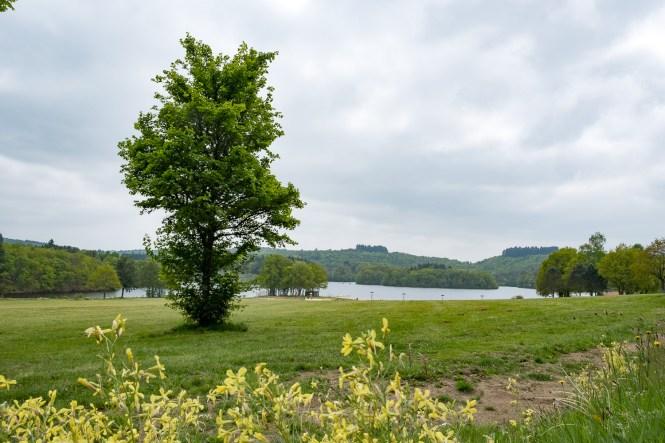 lac de saint pardoux haute vienne