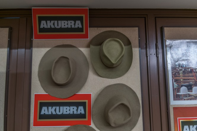 kempsey PORT macquarie akubra