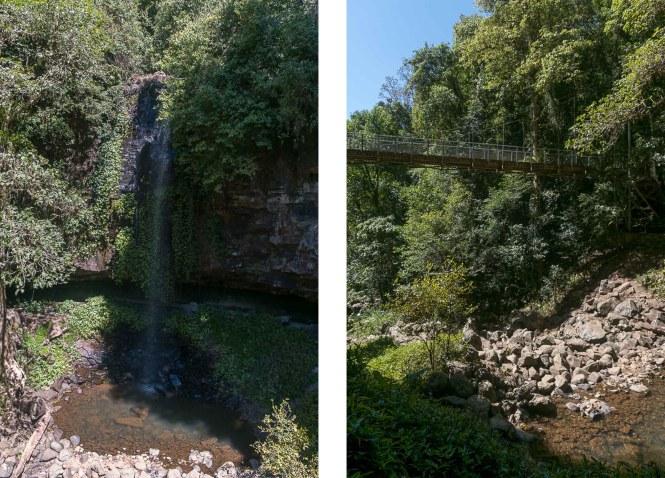 Crystal Shower Falls Dorrigo National Park