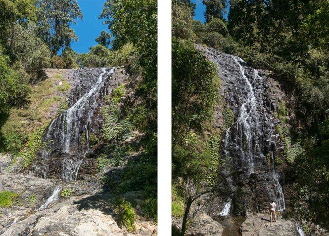 Tristania falls Dorrigo National Park