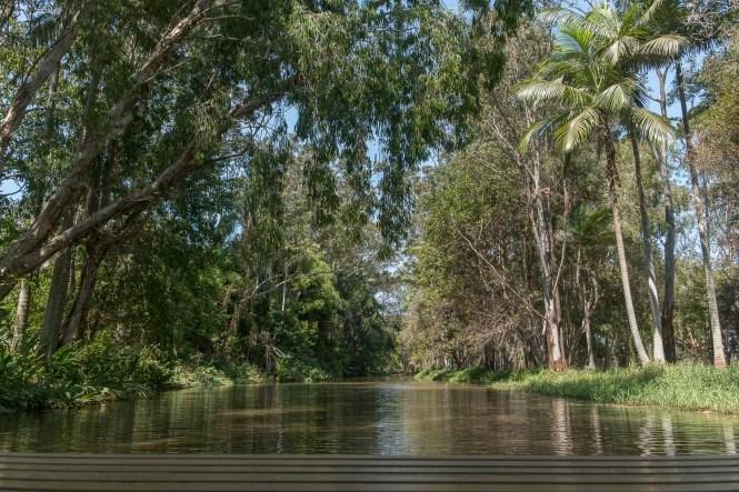 Wildlife boat cruise Tropical Fruit World