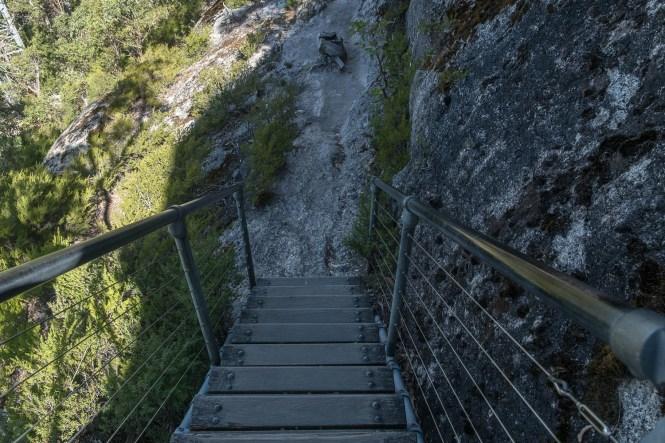 Mount Oberon Summit Track Wilsons Promontory escalier