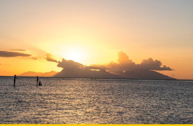 acheter polynesie paddle