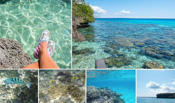 Baie-de-jinek-lifou-photo