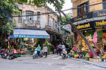fleurs 36 rue des corporations Visiter hanoi