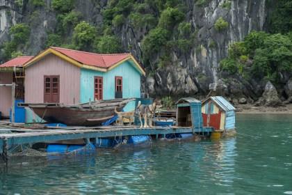 Maisons Vung Vieng bai tu long vietnam