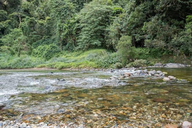 riviere-Transversale-Kone-Tiwaka-côte-est-hienghene