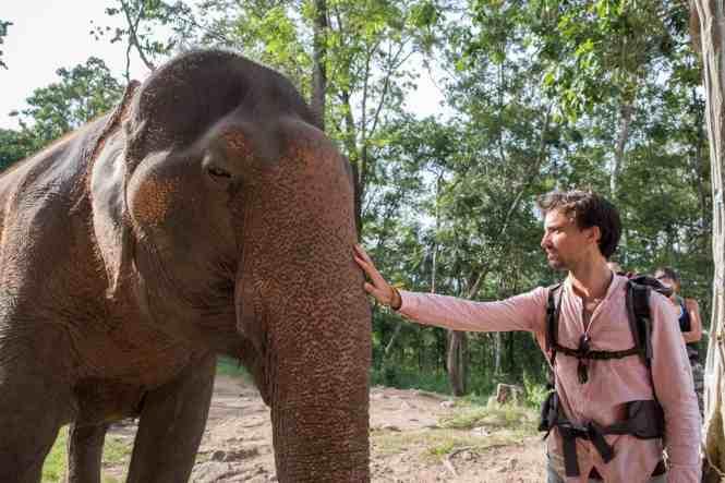 Budget-Laos-plateau-des-boloven-elephant