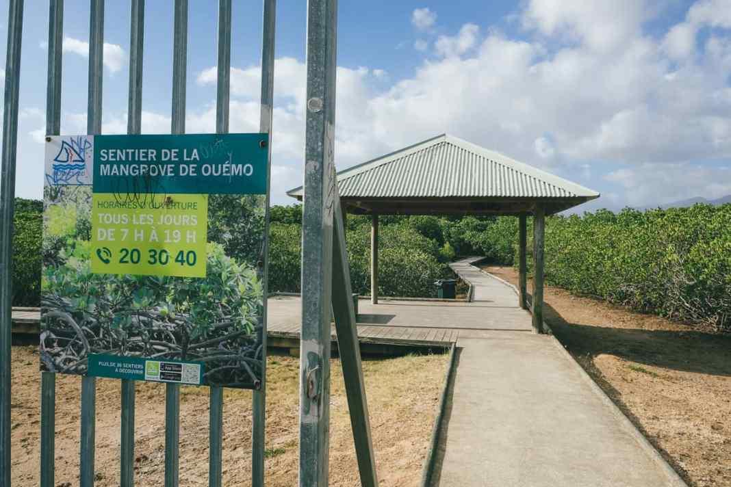 sentier-de-la-mangrove-de-Ouémo-entrée