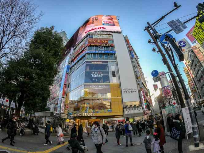 Shibuya-Crossing-occitane-cafe
