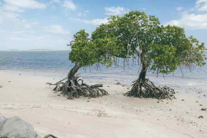 Moindou-Nouvelle-Calédonie-plage-de-tanghy