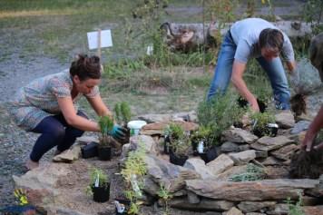 Bepflanzung der Zone II durch Mareike und Birgit