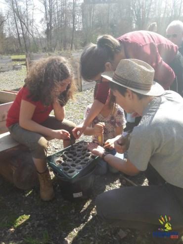 Ava, Myriam und Birgit säen Tomaten in die selbstgeschaffenen Anzuchttöpfchen aus Zeitungspapier.