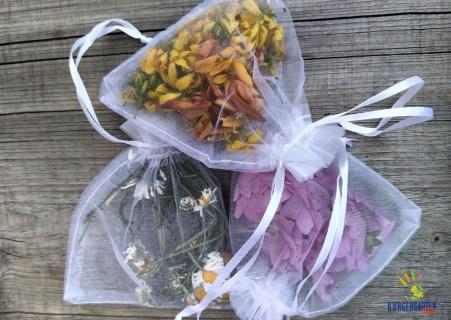 Kamille, Johanniskraut und Malve durften als traditionelle Heilpflanzen natürlich nicht fehlen.