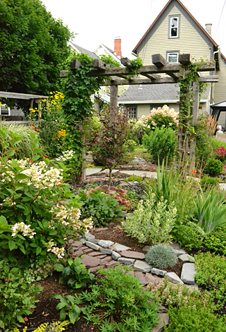 Groundcovers are important in grassless front & backyards ... on Grassless Garden Ideas  id=99336