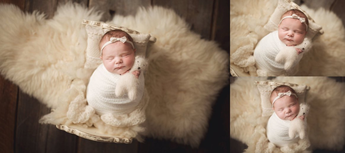 buffalo newborn photography session