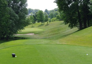 Greens At Renton-9th Hole of the Green Course