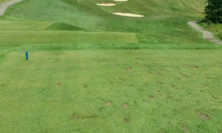 Course Review: Totteridge Golf Club