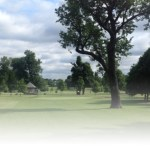 How to go about rebuilding Delaware Park Meadows golf course