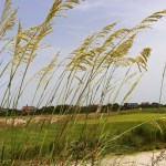 GS photo compilation 1: Kiawah Island Ocean Course