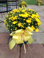 Flowers by Lipinoga Florist of Clarence NY for Wedding at Timberlodge in Akron NY (13)