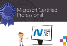 .net software development
