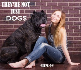 girl sitting near wall next to the dog Cane Corso and she tilted
