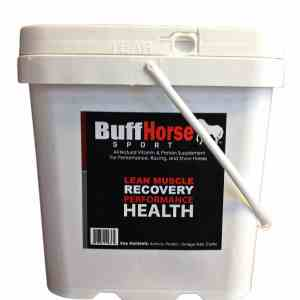 horse supplements equine health
