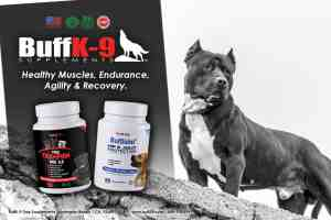 buffk9 vitamins pitbull supplements bully muscle abpt health stress joints dogs