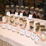 Aroma bar - Park wine stars