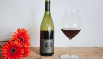 Tilia - Pinot noir, Estate 2