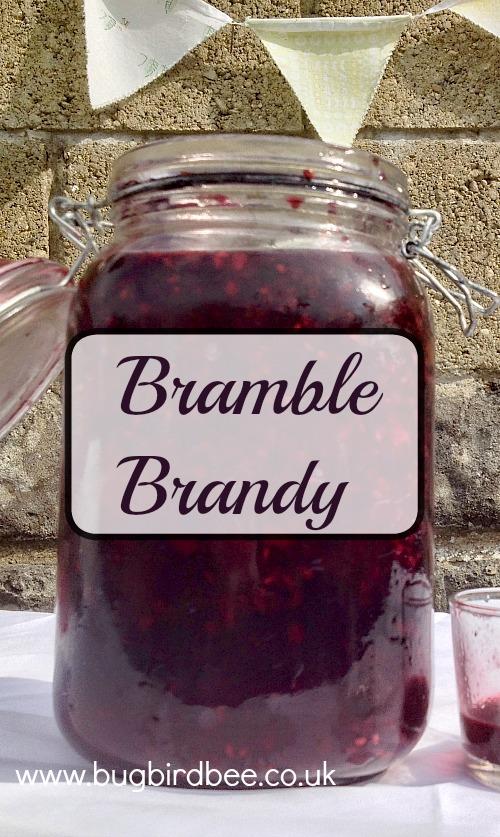 Bug, bird and Bee bramble brandy