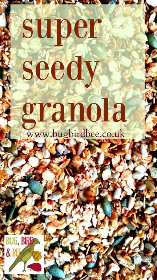 Super Seedy Granola-Parragon Books Natural: Wholesome Recipes For Pure Nourishment