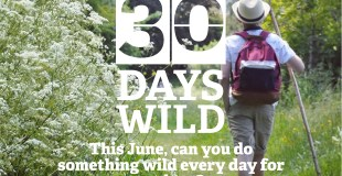 Get Outdoors Every Day In June For #30DaysWild