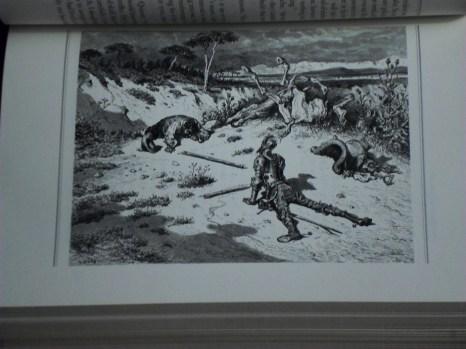 Don Quixote 29