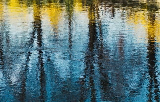 Lacs, mares, flaques… Envoyez-nous vos plus belles photos de reflets dans l'eau