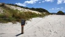 New Dunes