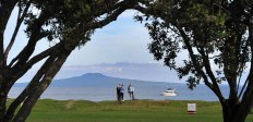Looking out to Rangitoto Island