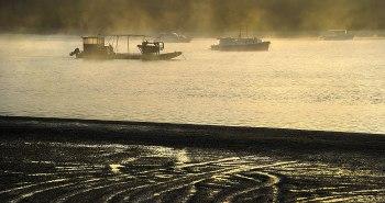 Dawn with Fog