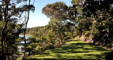 Terraced bush camping