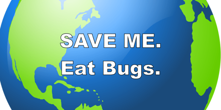 Reasons to Eat Bugs