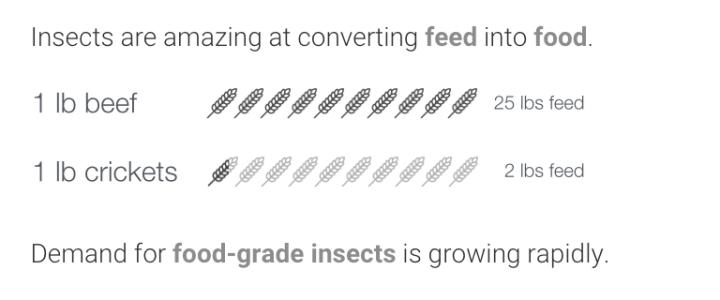 Tiny Farms Info