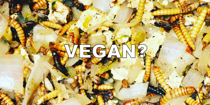 Should Vegans Eat Insects?