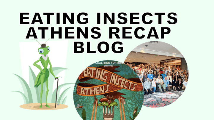 Eating Insects Athens 2018 – A Recap of Industry Growth