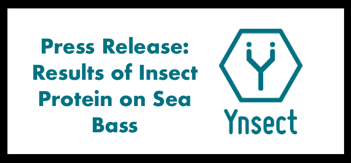 Aquaculture: Ÿnsect unveils the results of its insect protein ŸnMeal™ on sea bass
