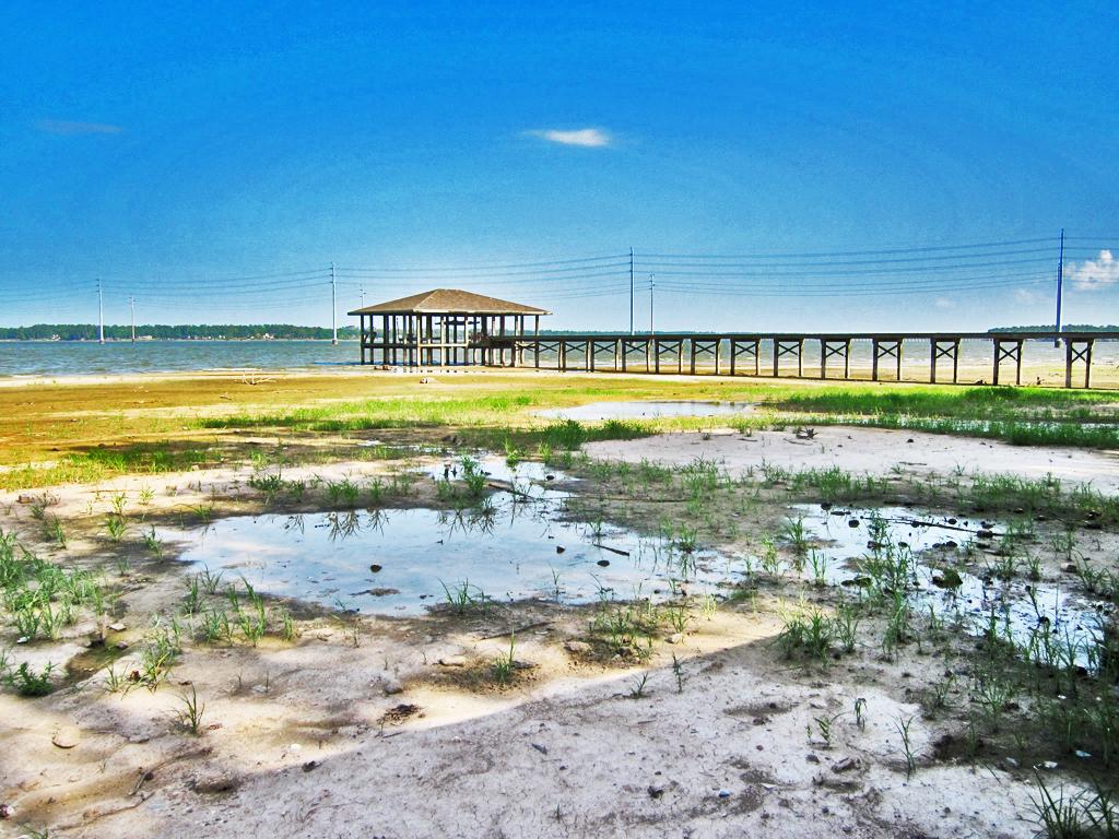 Lake Houston: Stagnant pools in dry lake bed