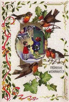 German Christmas Robin