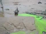 environmental trace