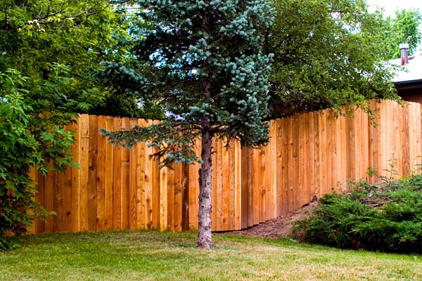 building a new fence
